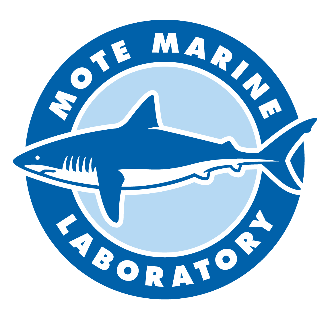 Fundraiser Car Wash for Mote Marine Laboratory Hurricane Irma Disaster Relief Funds