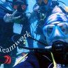 Viv blog fish id masternaut proj