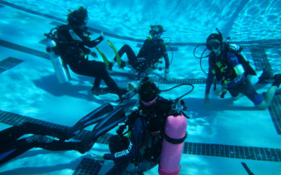 Dive Safety Rescued by Camaraderie