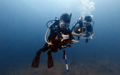 Lionfish Removal Survey at FGBNMS