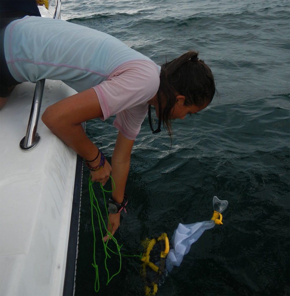 diver towing plankton off side of boat