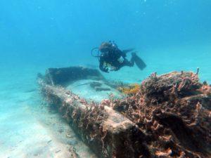 teens dive Blue Heron Bridge in Jupiter Florida