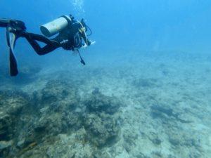 teens dive Jupiter Florida