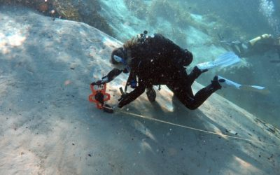 Scientific Diver Training at Alexander Springs